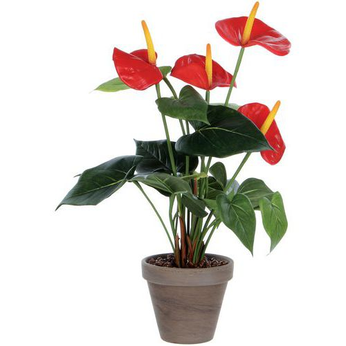 Kunstplant Anthurium - Vepabins