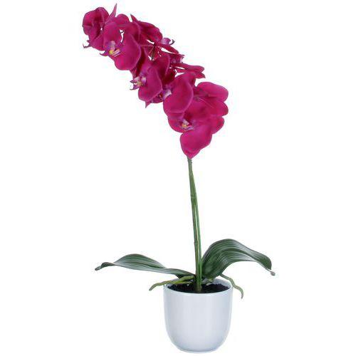 Kunstplant Phalaenopsis orchidee 60cm - Vepabins