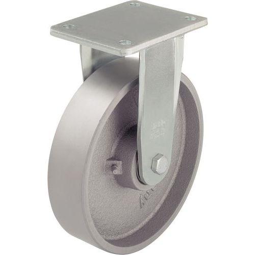 Afbeelding van Gietijzeren wiel - draagvermogen 750 tot 1200 kg - vast wiel