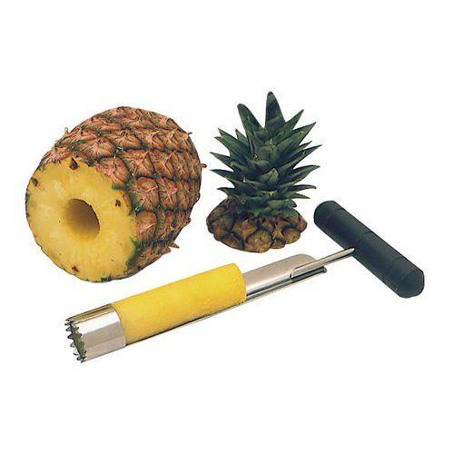 Ananassnijder